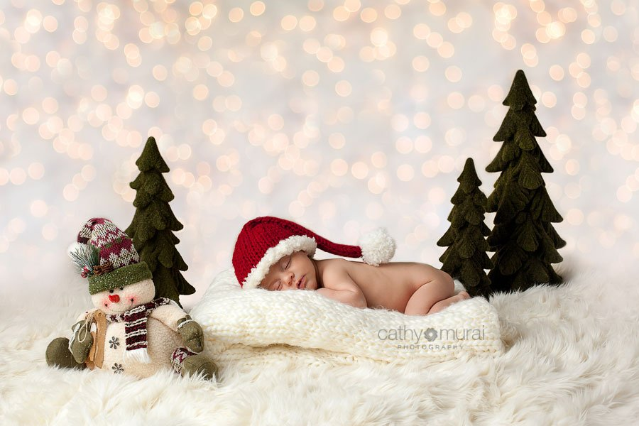 Merry Christmas! | Los Angeles Newborn & Family Photographer ...