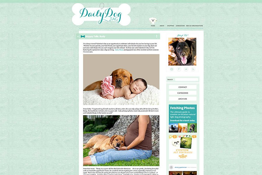 Newborn and Pet photography taken by Cathy Murai Photography, Los Angeles Nweborn and Pet Photographer, have been featured on the Daily Dog Tag