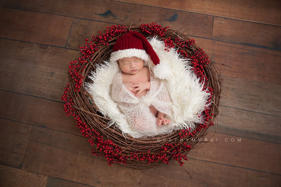 Christmas Portrait Photography | Los Angeles Newborn, Baby and ...