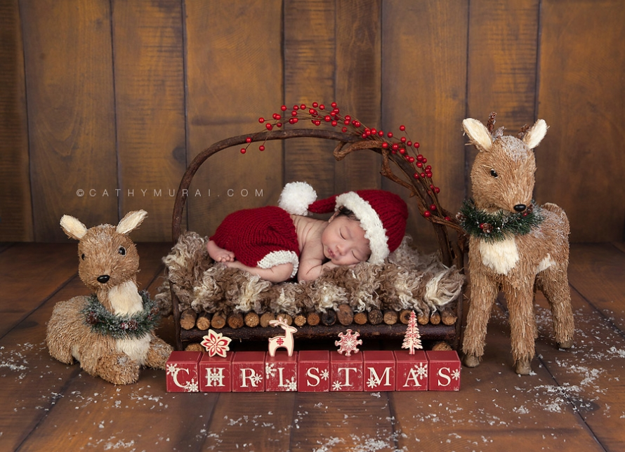 Newborn baby boy wearing santa hat and pants sleeping on the wooden bed in front of wooden backdrop from lemon drop stop Cathy-Murai-Photography- Alhambra-South Pasadena-Pasadena-San Marino-San Gabriel Valley-Los Angeles-Professional Christmas Photographer-Professional Christmas Photography-Christmas newborn photography-Christmas newborn pictures-Christmas newborn photography props-Christmas newborn photography ideas-Newborn Christmas portraits-Newborn baby Christmas photography-Newborn Christmas Photography