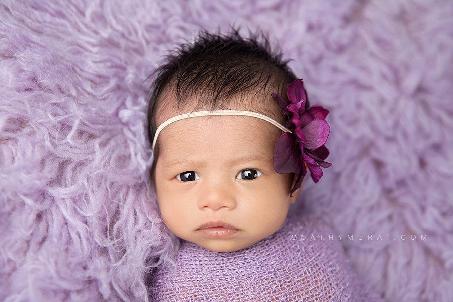 Awake Asian newborn baby girl swaddled in a purple  wrap  looking straight at the camera. Captured by Cathy Murai Photography, Los Angeles, Alhambra, San Gabriel Newborn Baby Photographer, Purple flokati. newborn props, photography props.