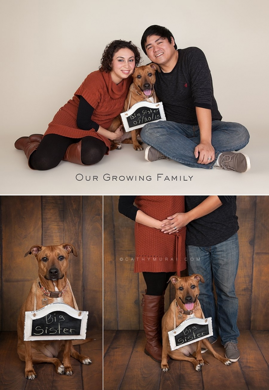 Expectant Parent's First Pregnancy Announcement Starring Their Family Dog (Big Sister) | by Cathy Murai Photography – Los Angeles Maternity & Family Pet Photographer