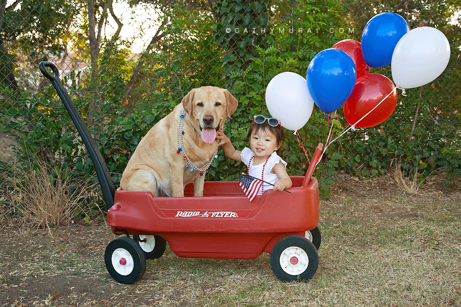 Celebrating 4th of July with kid and dog.  Radio Flyer red wagon, 4th of July, Independence Day, Red, white and blue, balloons, outdoor photography, park, Labrador Retriever, girl and dog, July 4th, family dog, Los Angeles kid photographer, Los Angeles kid photography, Los Angeles pet photographer, Los Angeles pet photography