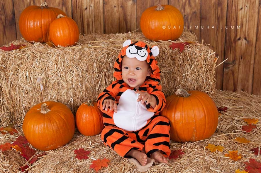 Tiger, Happy Halloween, Los Angeles Halloween Photographer, Halloween Mini Session, Hay and pumpkins, fall leaves