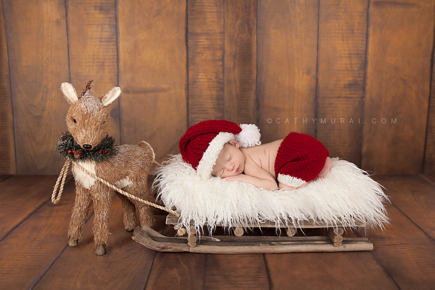 Newborn baby boy wearing santa hat and pants sleeping on a sleigh behind the reindeer, Christmas Newborn Portrait Session, Los Angeles Christmas Newborn Portrait Session, Alhambra Christmas Newborn Portrait Session, Pasadena Christmas Newborn Portrait Session, South Pasadena Christmas Newborn Portrait Session, Las Tunas Christmas Newborn Portrait Session, Rosemead Christmas Newborn Portrait Session, San Marino Christmas Newborn Portrait, El Monte Christmas Newborn Portrait Session, South El Monte Christmas Newborn Portrait Session, San Gabriel Valley Christmas Newborn Portrait Session, Monrovia Christmas Newborn Portrait Session, Glendale Christmas Newborn Portrait Session, North Hollywood Christmas Newborn Portrait Session, Los Angeles Christmas Newborn photographer baby Christmas Newborn photographer, Los Angeles Christmas Newborn baby photography, famous baby photographer, famous Christmas Newborn photographer, los Angeles best Christmas Newborn photographer, Los Angeles Christmas Newborn photography, los Angeles Christmas Newborn photographer, los Angeles, Christmas Newborn photography, Alhambra, Christmas Newborn photography, Pasadena Christmas Newborn baby photographer, Pasadena Christmas Newborn photographer, San Gabriel Valley Christmas Newborn photography, San Gabriel Valley Christmas Newborn photographer, Alhambra Christmas Newborn photography, Las Tunas Christmas Newborn photography, Las Tunas Christmas Newborn photographer