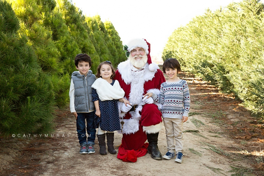 Christmas Tree Farm Mini Sessions.Orange County Christmas Tree Farm Mini Sessions With Santa